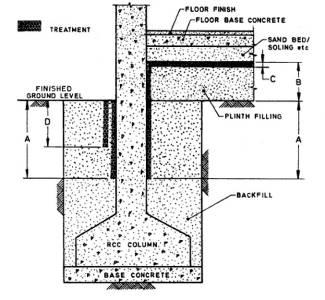 [Image: termite7.jpg]